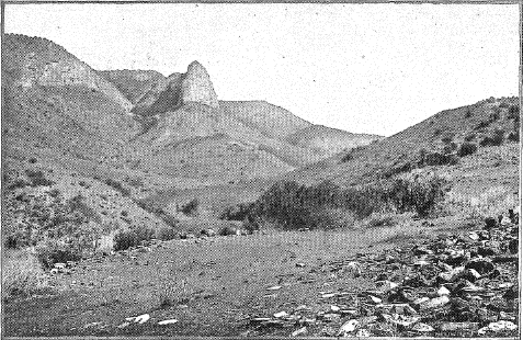 Архивное фото местности,где был обнаружен SCP-992